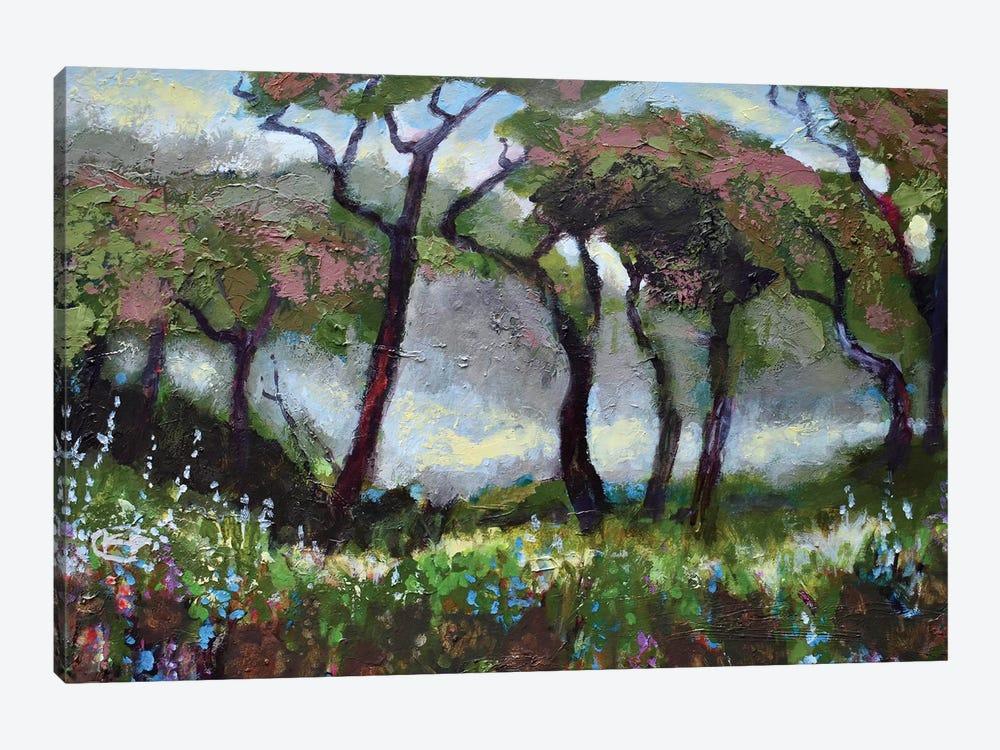 Woodland Light by Kip Decker 1-piece Canvas Print