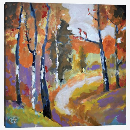 Autumn Trail Canvas Print #KIP4} by Kip Decker Art Print
