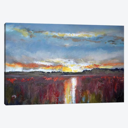 Evening Splendor Canvas Print #KIP51} by Kip Decker Art Print