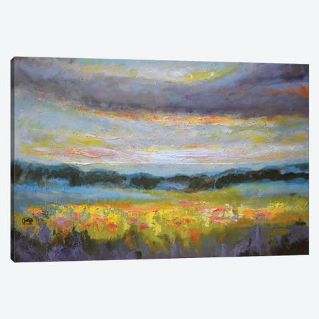 Late Afternoon Light Canvas Print #KIP52} by Kip Decker Canvas Art Print