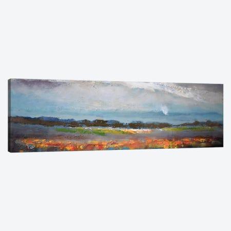Soft Rain Canvas Print #KIP54} by Kip Decker Canvas Art
