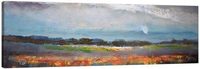 Soft Rain Canvas Art Print