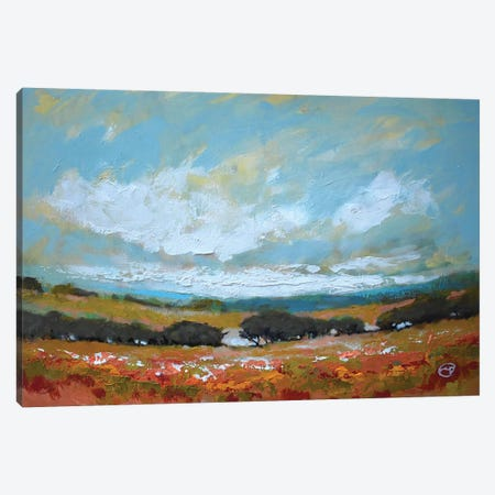 White Clouds Over Valley Canvas Print #KIP57} by Kip Decker Canvas Wall Art