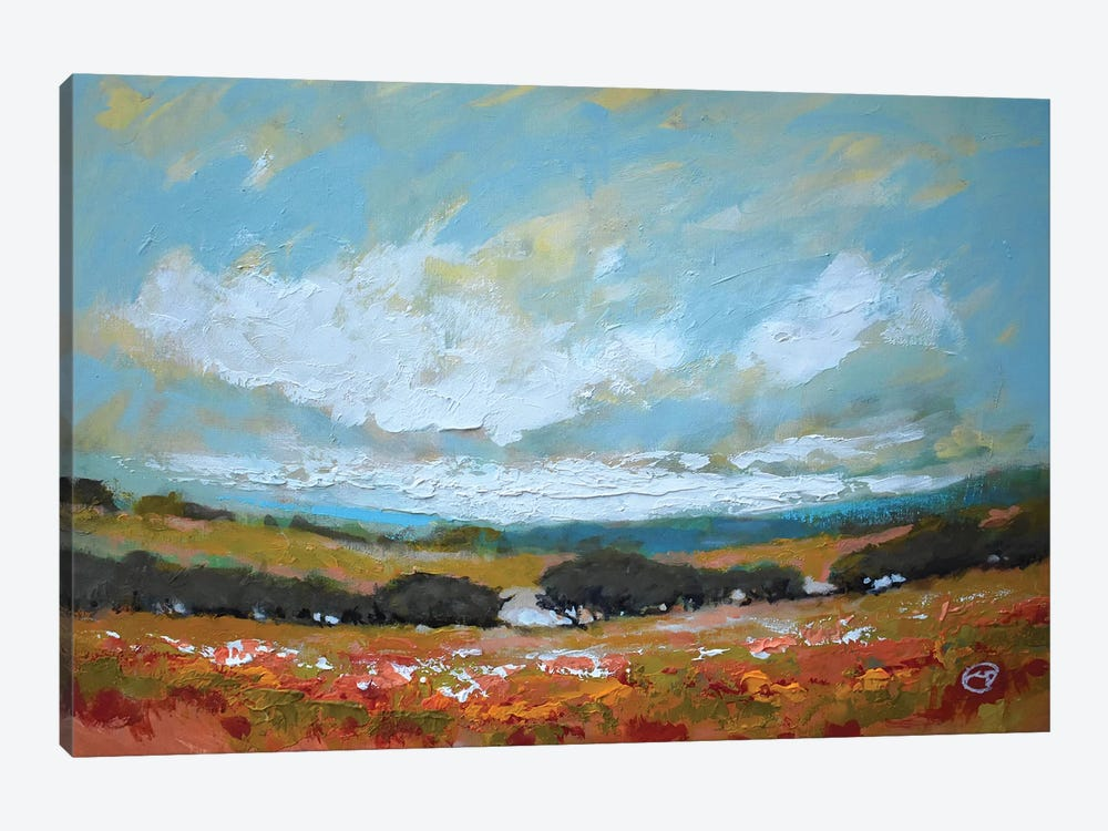 White Clouds Over Valley by Kip Decker 1-piece Canvas Wall Art