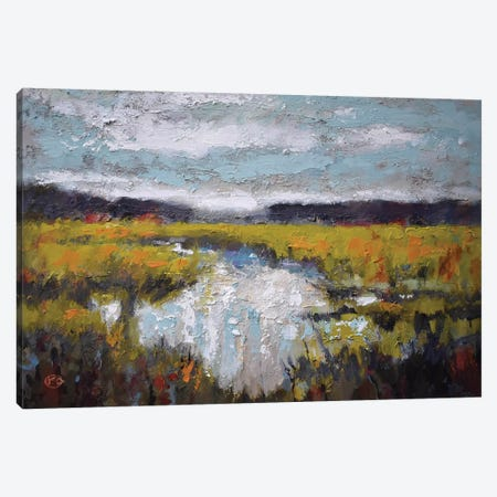 Clouds Over Marsh 3-Piece Canvas #KIP58} by Kip Decker Art Print