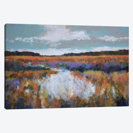 Fall Marsh Canvas Print #KIP59} by Kip Decker Art Print