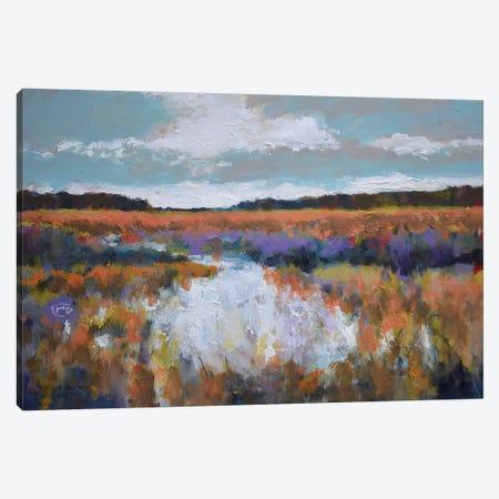 Fall Marsh Canvas Print #KIP59} by Kip Decker Art Print