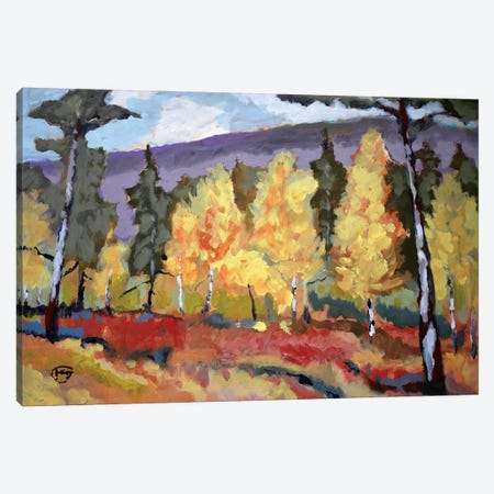 Autumn Trees Canvas Print #KIP5} by Kip Decker Art Print