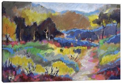 Foothills Trail Canvas Art Print