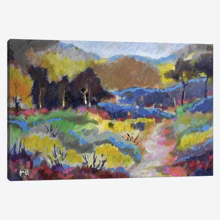 Foothills Trail Canvas Print #KIP61} by Kip Decker Canvas Art