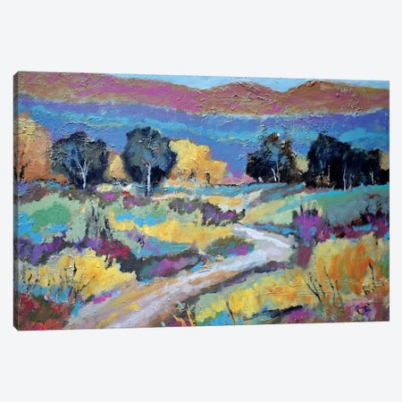 Old Ranch Road Canvas Print #KIP64} by Kip Decker Canvas Art Print