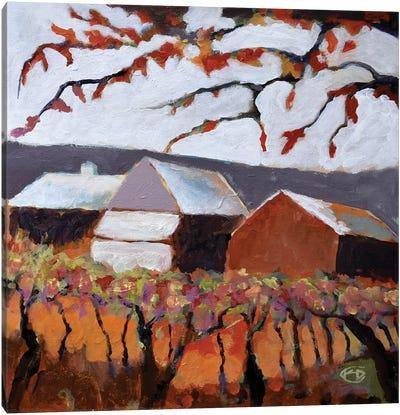 Autumn Vineyard Canvas Print #KIP6