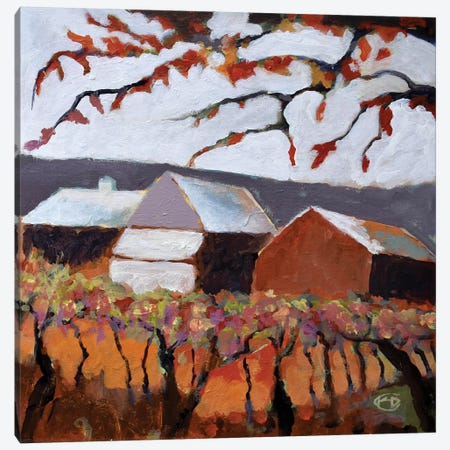 Autumn Vineyard Canvas Print #KIP6} by Kip Decker Art Print