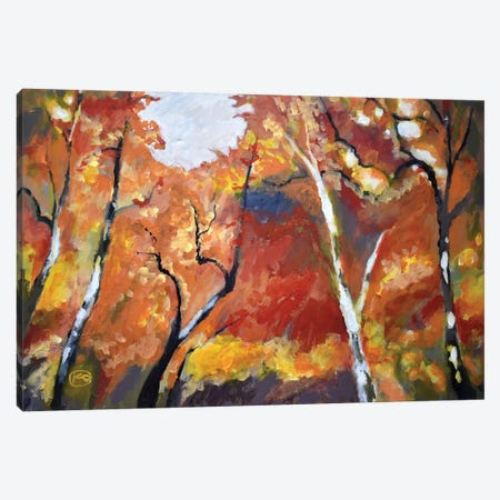 Autumn Woodland Canvas Print #KIP7} by Kip Decker Canvas Print