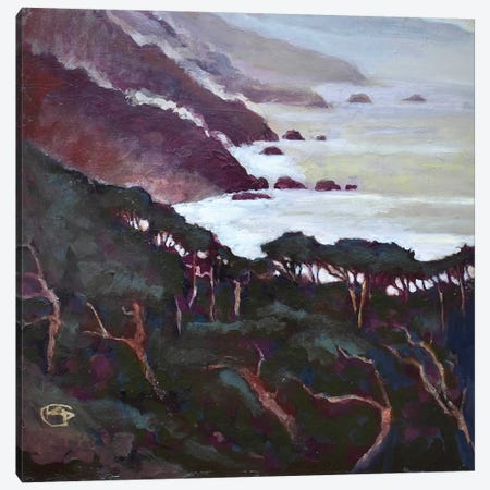 Big Sur Canvas Print #KIP8} by Kip Decker Canvas Art