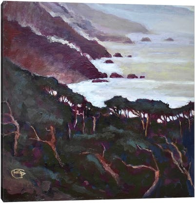 Big Sur Canvas Print #KIP8