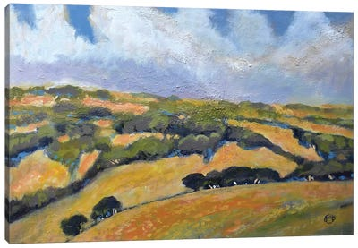 California Hills Canvas Art Print