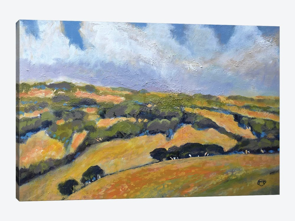 California Hills by Kip Decker 1-piece Art Print