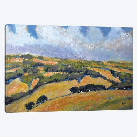 California Hills Canvas Print #KIP9} by Kip Decker Canvas Wall Art