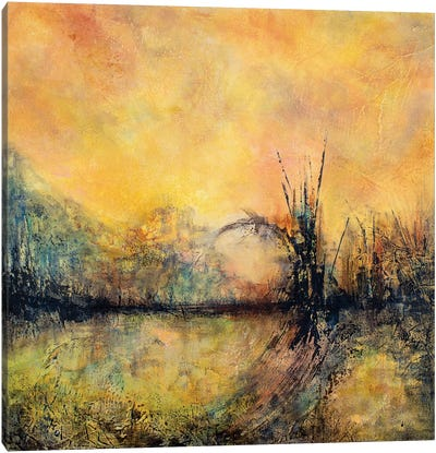 Zen River Canvas Art Print