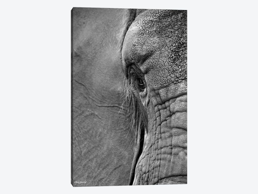 Floppy and Wrinkled by Kathy Jennings 1-piece Art Print