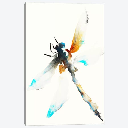 Blue & Brown Dragonfly Canvas Print #KJO1} by Karin Johannesson Art Print