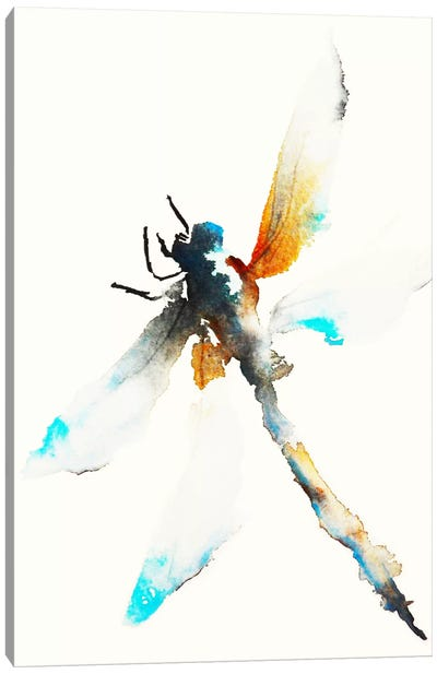 Blue & Brown Dragonfly Canvas Art Print