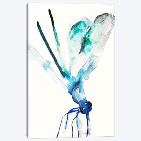 Blue & Green Dragonfly Canvas Print #KJO2} by Karin Johannesson Art Print