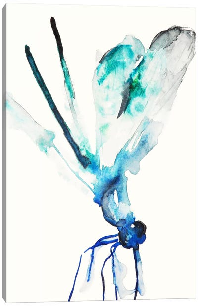 Blue & Green Dragonfly Canvas Art Print