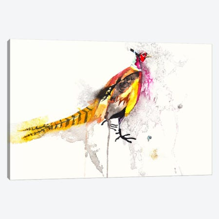 Pheasant Canvas Print #KJO5} by Karin Johannesson Canvas Artwork
