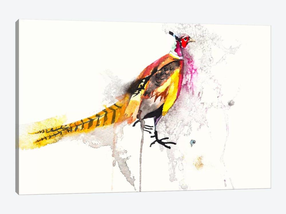 Pheasant by Karin Johannesson 1-piece Canvas Artwork