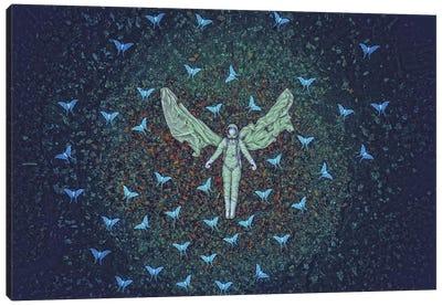 1969 VII Canvas Art Print