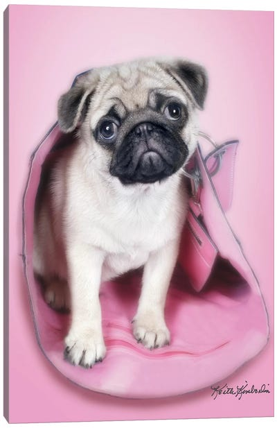 Pug In A Purse Canvas Art Print
