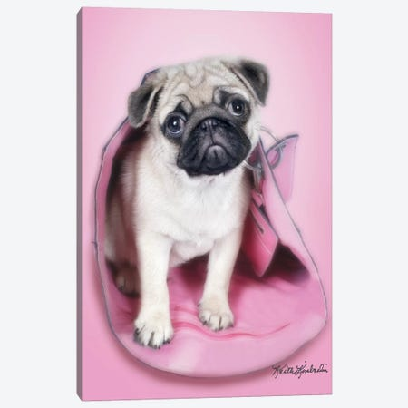 Pug In A Purse Canvas Print #KKI28} by Keith Kimberlin Canvas Art