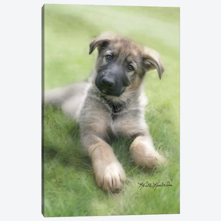 Shep Canvas Print #KKI30} by Keith Kimberlin Art Print