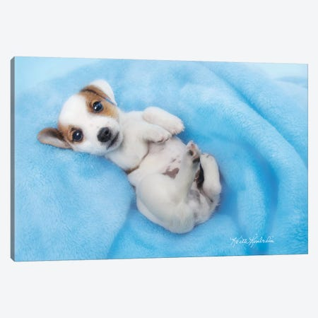Snuggles Canvas Print #KKI32} by Keith Kimberlin Canvas Print