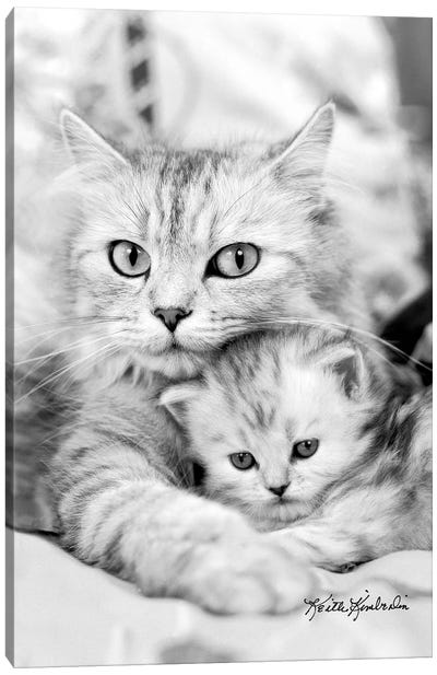 Twinkie & Kit  Canvas Art Print