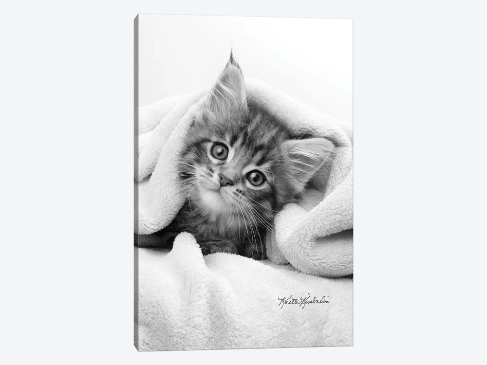 Bug In A Rug by Keith Kimberlin 1-piece Canvas Print