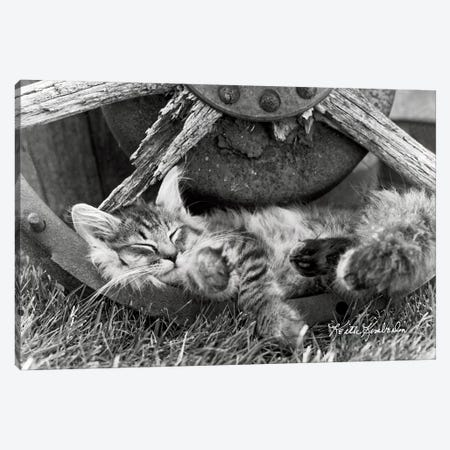 Cat Nap Canvas Print #KKI4} by Keith Kimberlin Art Print