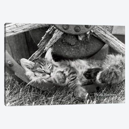 Cat Nap Canvas Print #KKI4} by Keith Kimberlin Art Print