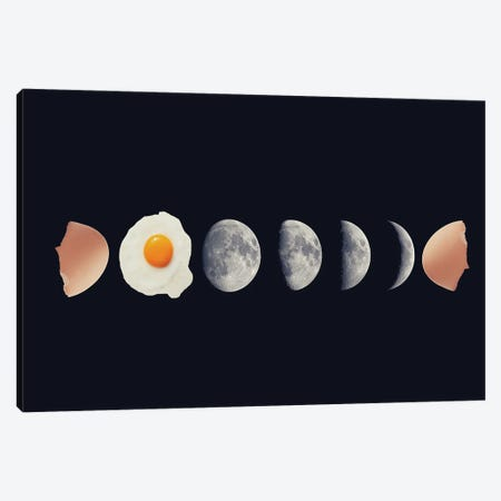 Egg Phase Canvas Print #KKL28} by Kiki C Landon Canvas Print