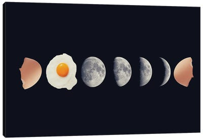 Egg Phase Canvas Art Print