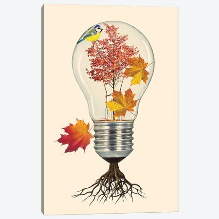 Fall Canvas Print #KKL35} by Kiki C Landon Art Print