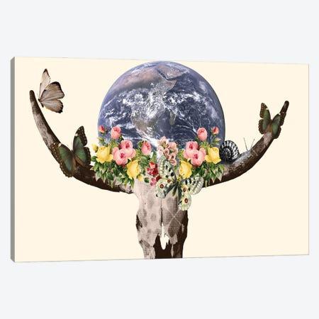 Holy Bullskull Canvas Print #KKL54} by Kiki C Landon Art Print