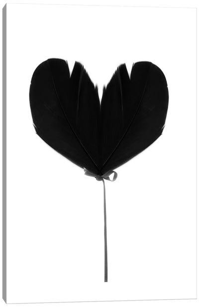 Balloon Heart Canvas Art Print