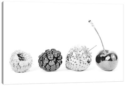 Silver Fruits Canvas Art Print