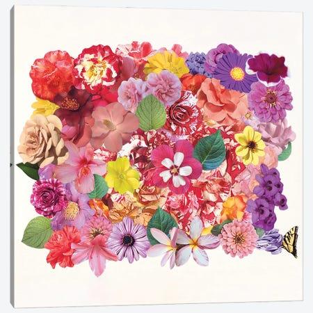Calling Spring Canvas Print #KKM38} by Kat Kleinman Art Print
