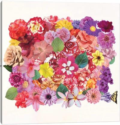 Calling Spring Canvas Art Print
