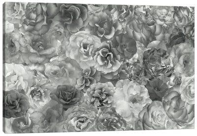 Fierce Canvas Art Print