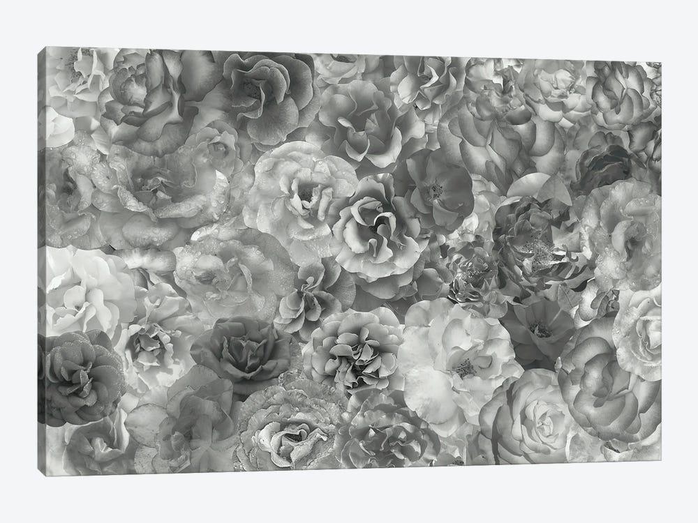 Fierce by Kat Kleinman 1-piece Canvas Art Print